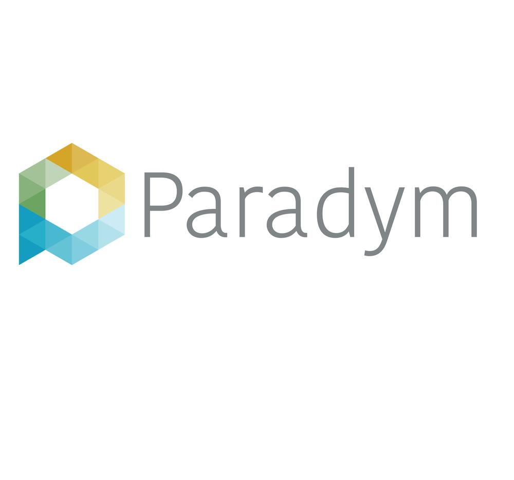 rsz paradym web